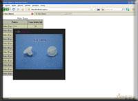 Zrzut ekranu - Kurs jQuery